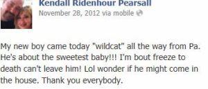 wildcat3